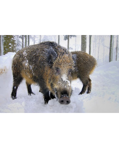 Deerhunter Germania Overtrækspose