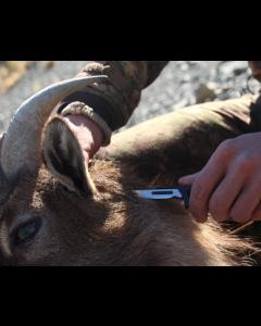 Hunttech Tyrfing Hunting Knife